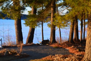 Think that Adirondack bench will be a favorite sunset cuddling spot this summer? Kind of looks like our new logo!