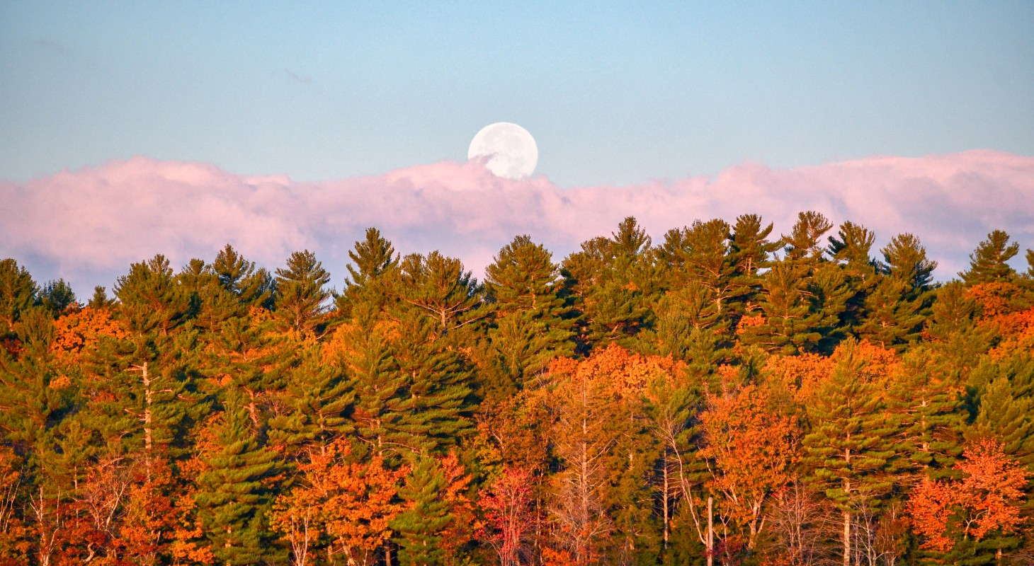Scenic shot of moon and fall landscape in Poland Maine