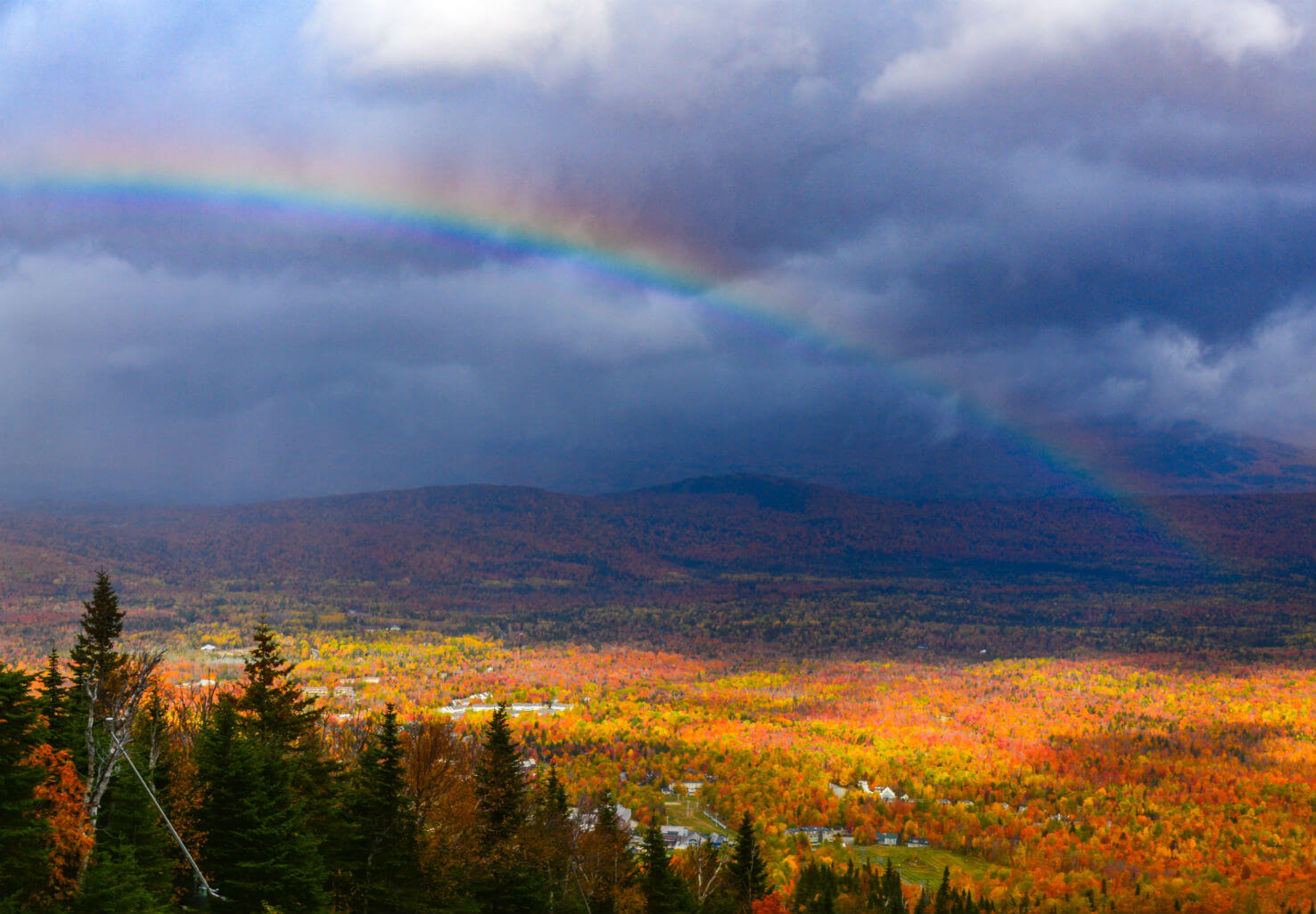 Rainbow over foliage on Mount Sugarloaf