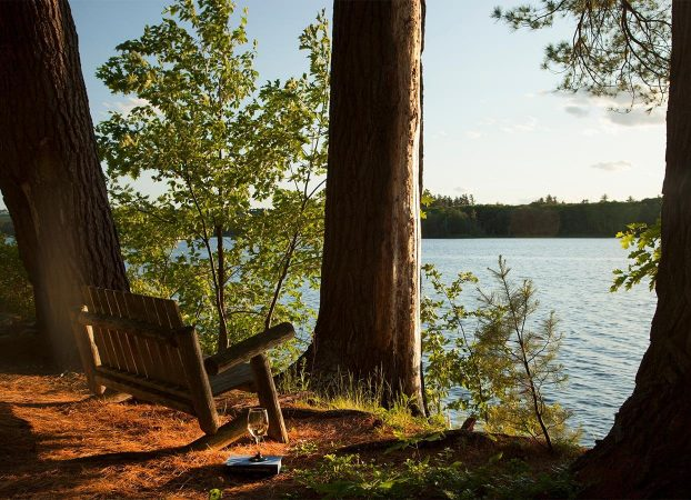 Bench with a book and glass of wine overlooking Tripp Lake
