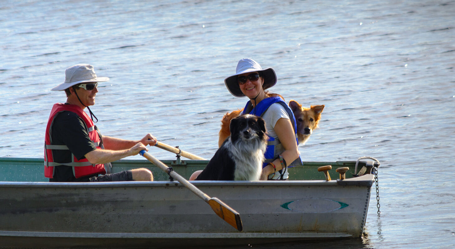 Two dogs in a rowboat on the lake with their humans