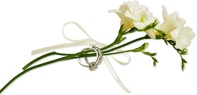 Freesia Flowers with Rings