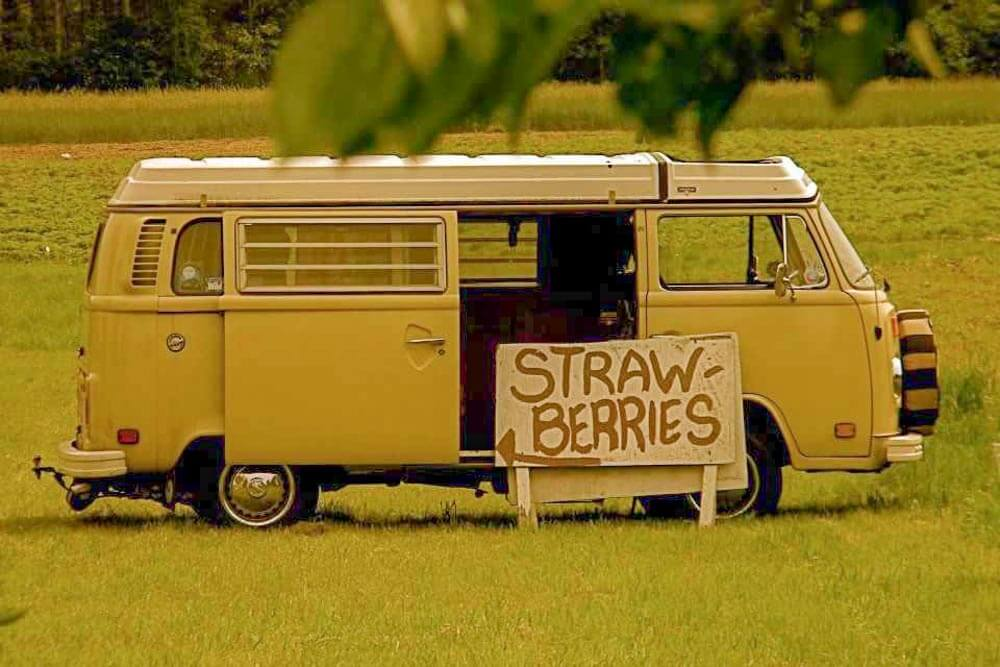 Fairwind Farm Maine Strawberries