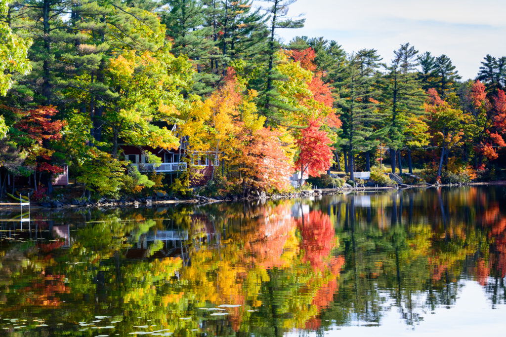 Red, green, yellow, and orange foliage reflecting in lake surface