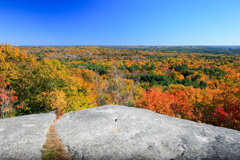 colorful foliage surround a granite rock face.