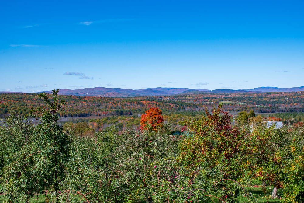 The view from Ricker Hill Orchard