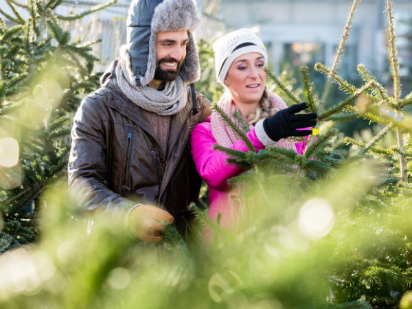 couple shopping for christmas trees in hats and gloves