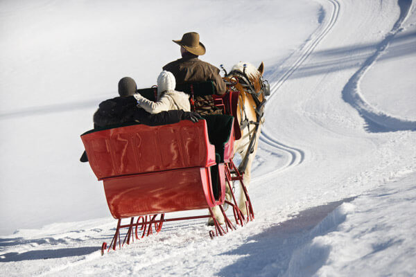 Sleigh Ride Proposing In Maine