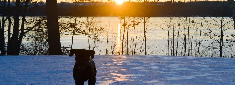 winter activities in Maine