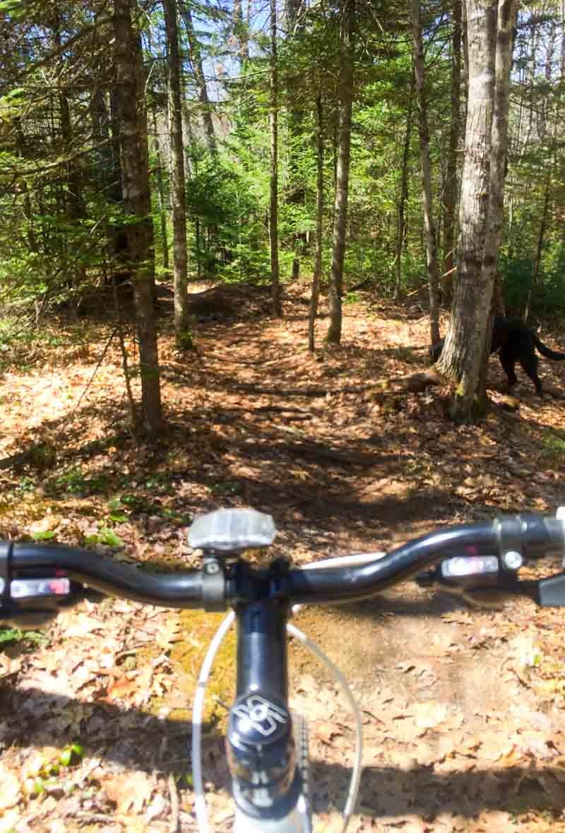 Top Biking Trails in Maine :: 8 of The Best Off Road Trails