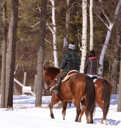 Horseback Proposing In Maine