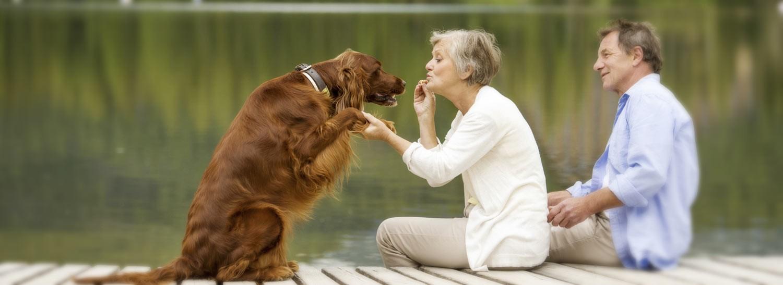 owner and dog at the lake