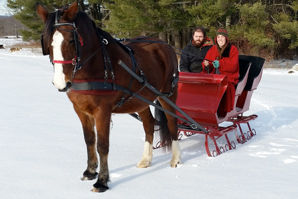 Couple in a red horse drawn sleigh in the snow