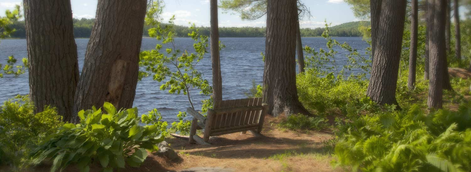 bench with lake view