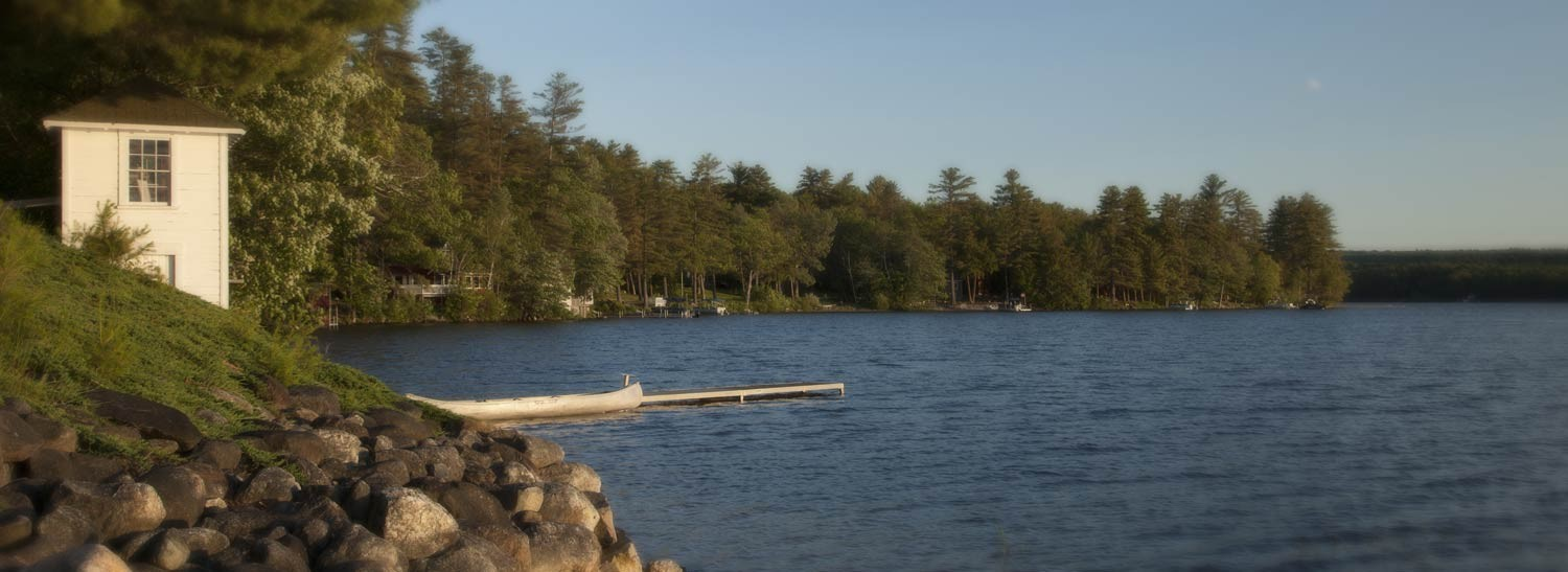 The shoreline at Tripp Lake